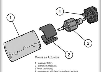 BSc Module 4
